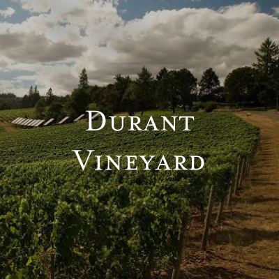 Durant Vineyards • Elizabeth Chamber Cellars